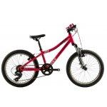 Bicicleta copii Devron Riddle K2.2 280 mm roz 20 inch