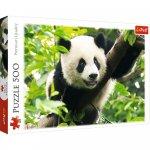 Puzzle Trefl Panda urias 500 piese