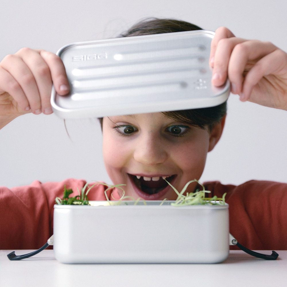Cutie din aluminiu pentru alimente Plus Alu L