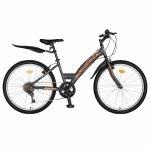 Bicicleta Trekking 24 Rich R2430A 6 viteze gri/portocaliu