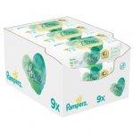 Servetele umede Pampers Coconut Pure 9 pachete x 42, 378 buc