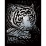 Set gravura pe folie argintie Tigru alb