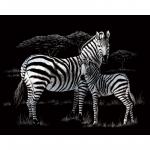 Set gravura pe folie argintie Zebra