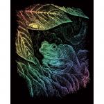 Set gravura pe folie curcubeu Broasca