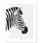 Poster (30x40cm) Serengeti Zebra
