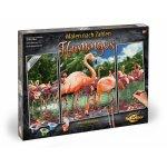 Kit pictura pe numere Schipper Flamingo