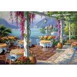 Puzzle Anatolian Wisteria Terrace 500 piese