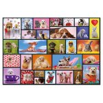Puzzle Educa Shared Moments 1000 piese include lipici puzzle