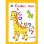Cartea mea de colorat animale
