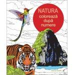 Coloreaza dupa numere Natura