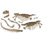 Kit excavare Dinozaur fioros