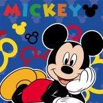 Prosopel magic Disney Mickey 30x30 cm SunCity