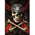 Puzzle Educa Skull of a Pirate 500 piese