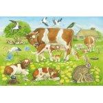 Puzzle Schmidt Familii de animale 3x48 piese include 1 poster