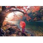 Puzzle Educa Sunrise in Katsura River Japan 1.000 piese