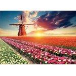 Puzzle Educa Tulips Landscape 1500 piese