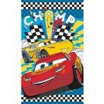 Prosop fata Cars Champ 30x50 cm SunCity