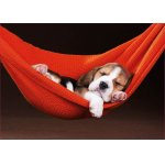 Puzzle Educa Sleeping In The Hammock 500 piese include lipici