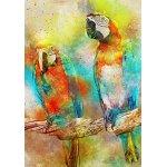 Puzzle Bluebird Parrots 1000 piese