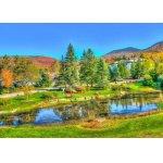 Puzzle Bluebird Stowe Vermont Usa 1000 piese