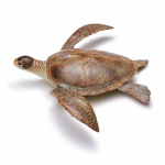 Figurina broasca testoasa moale 30 cm