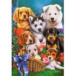 Puzzle Castorland Puppies 1000 piese