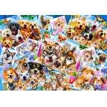 Puzzle Bluebird Selfie Pet Collage 1000 piese