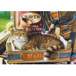 Puzzle Castorland Fothergill 500 piese