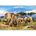 Puzzle Castorland Kilimanjaro Morning 1000 piese