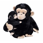 Mama si puiul cimpanzeu