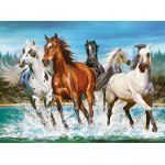 Puzzle Castorland Call Of Nature 2000 piese