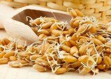 Seminte pentru germinat